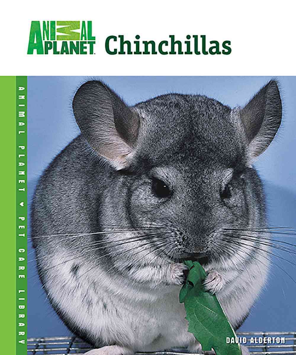 Chinchillas By Alderton, David